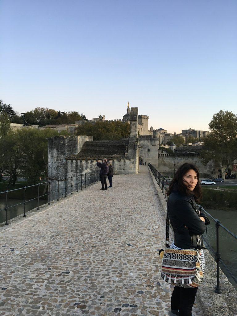 Avignon Köprüsü